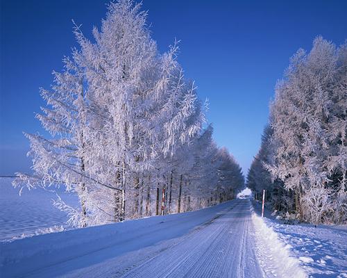 冬天雪地出行难 汽车安全驾驶三个关键